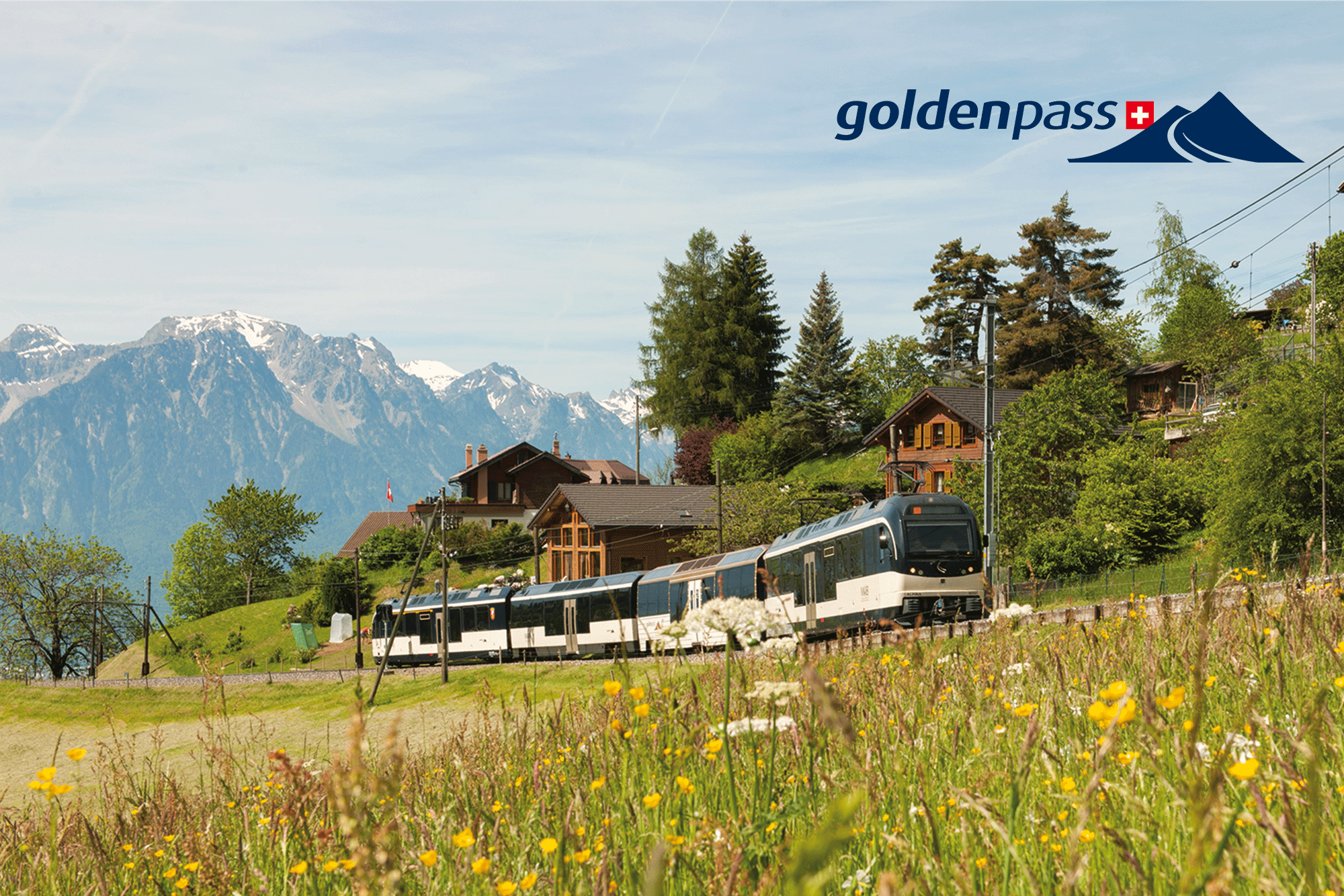GoldenPass Panoramic