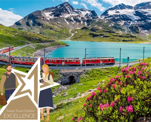 Swiss Travel System Excellence Program